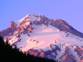 Alpenglow on the Slopes of Mount Hood, Oregon