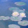 Waterlilies||<img src=_data/i/upload/2010/04/05/20100405123710-d7225ef1-th.jpg>