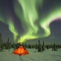 Camping Under the Northern Lights, Boreal Forest, Canada||<img src=_data/i/upload/2010/04/05/20100405125330-a4ca69e3-th.jpg>