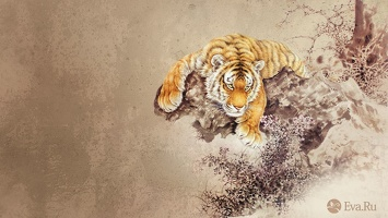 ws Tiger Abstract 1920x1080