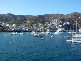 Catalina Island, USA