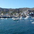 Catalina Island, USA||<img src=_data/i/upload/2016/09/28/20160928055644-10cf8de8-th.jpg>
